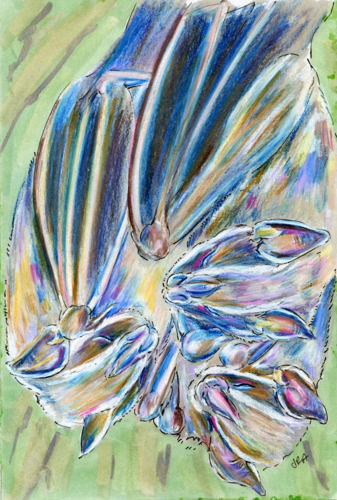 Uroderma bilobatum