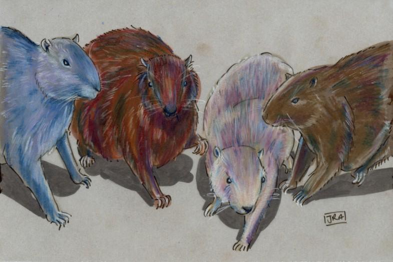 Four hutias