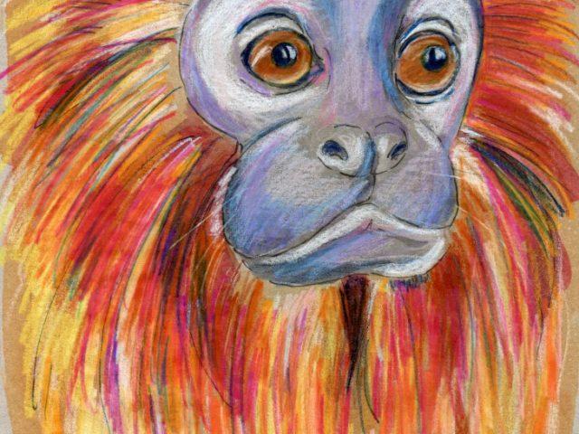 Extra mammal: Golden Lion Tamarin (Leontopithecus rosalia)