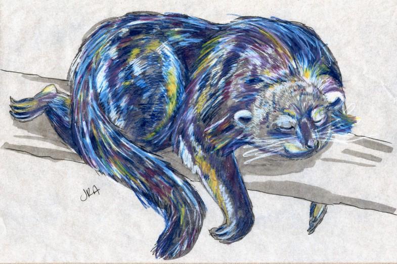 Arctictis binturong