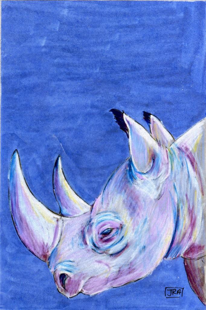 Scientific Names Week: Black Rhinoceros (Diceros bicornis)