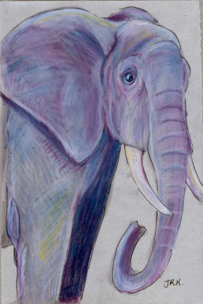 World Cup: Nigeria's African Bush Elephant (Loxodonta africana)