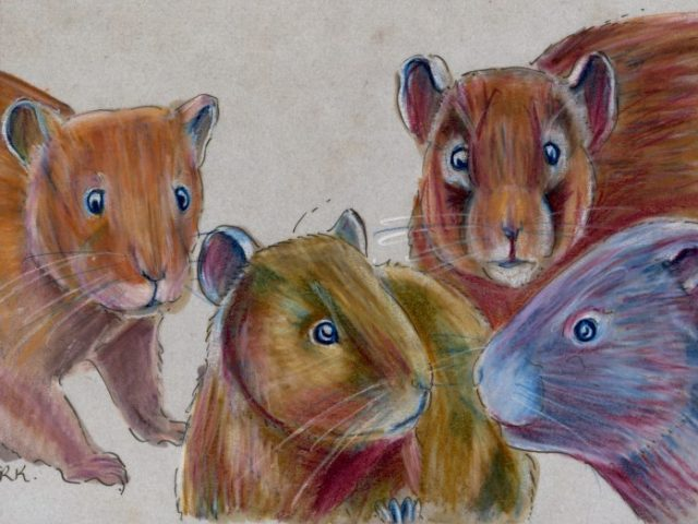 World Cup: Four Swiss Voles