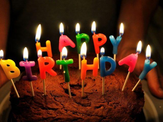 Happy birthday, Daily Mammal!