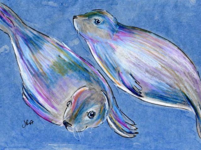 Mammalthon 2: Harbor Seal (Phoca vitulina)