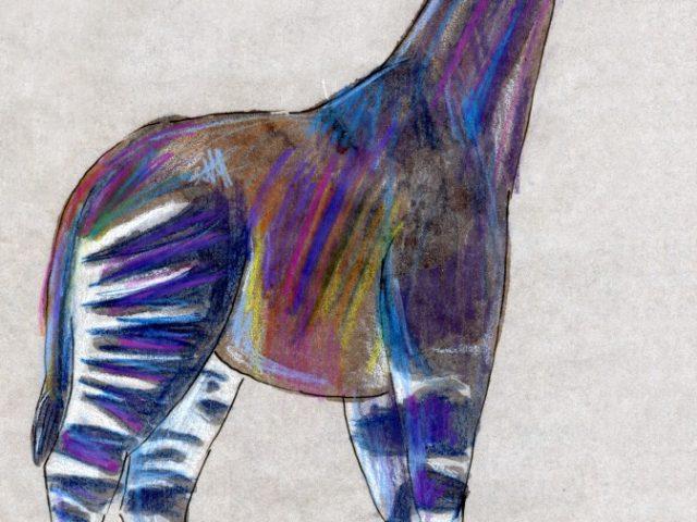 Striped Mammal Week: Okapi (Okapia johnstoni)