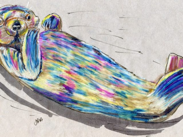 Back Orders: Sea Otter (Enhydra lutris)