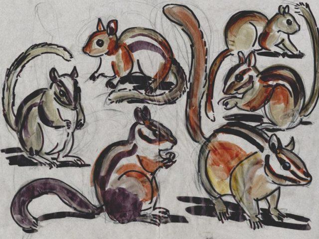 Hibernators Week: Chipmunks Six Ways (Tamias spp.)